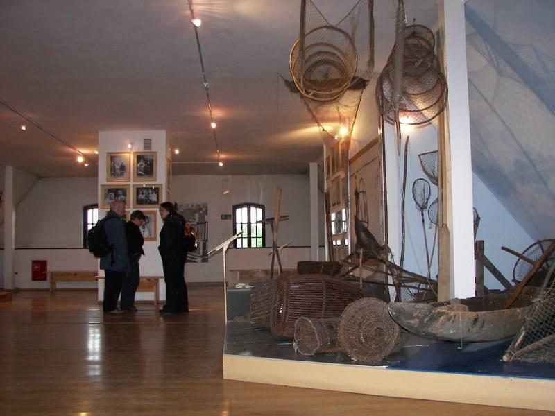 kuzawka2008-7
